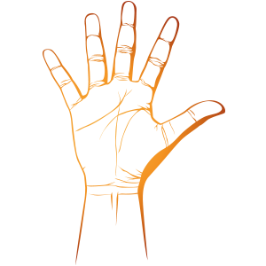 hand_5_reasons